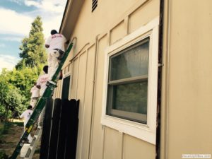 Springs-Painting-Co-Exterior-Painting-016