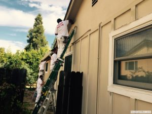 Springs-Painting-Co-Exterior-Painting-017