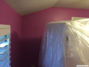 Springs-Painting-Co-Interior-Painting-028