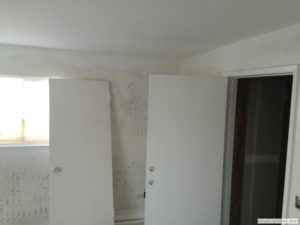 Springs-Painting-Co-Interior-Painting-089